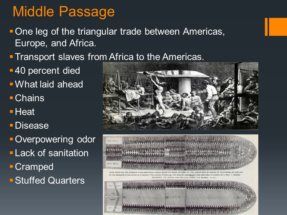 Middle Passage  One leg of the triangular trade between Americas, Europe, and Africa.