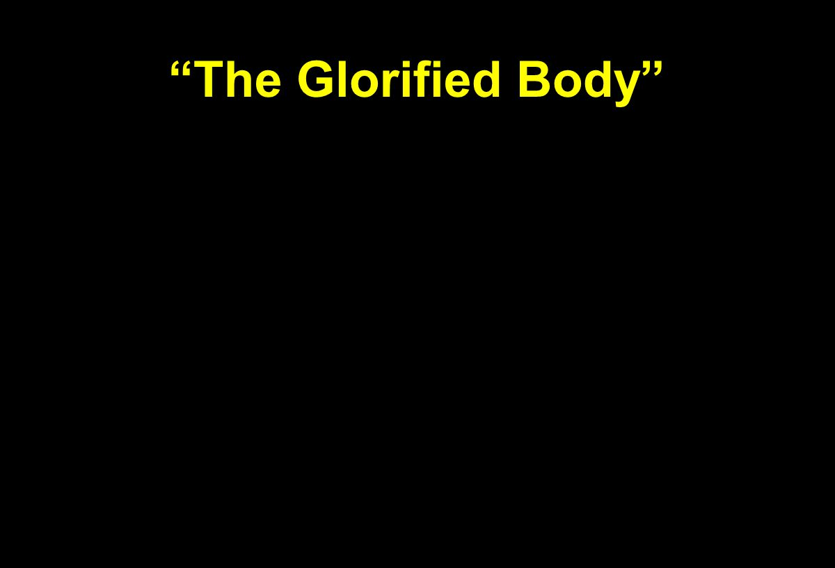 """The Glorified Body"""