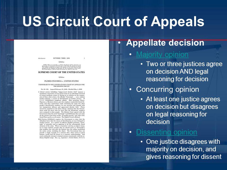 US Circuit Court of Appeals Appellate decision Majority opinion Two or three justices agree on decision AND legal reasoning for decision Concurring opinion At least one justice agrees on decision but disagrees on legal reasoning for decision Dissenting opinion One justice disagrees with majority on decision, and gives reasoning for dissent