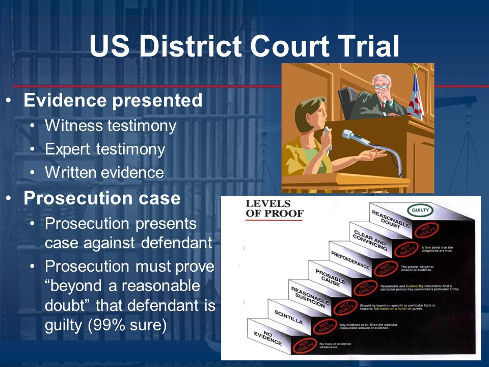 US District Court Trial Evidence presented Witness testimony Expert testimony Written evidence Prosecution case Prosecution presents case against defendant Prosecution must prove beyond a reasonable doubt that defendant is guilty (99% sure)
