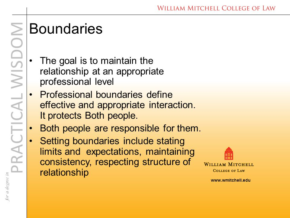 www.wmitchell.edu PRACTICAL WISDOM for a degree in Boundaries The goal is to maintain the relationship at an appropriate professional level Professional boundaries define effective and appropriate interaction.