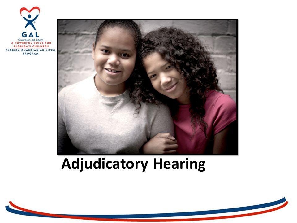 Adjudication and Adjudicatory Hearing