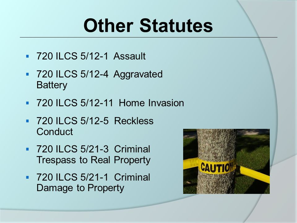 Other Statutes  720 ILCS 5/12-1 Assault  720 ILCS 5/12-4 Aggravated Battery  720 ILCS 5/12-11 Home Invasion  720 ILCS 5/12-5 Reckless Conduct  720 ILCS 5/21-3 Criminal Trespass to Real Property  720 ILCS 5/21-1 Criminal Damage to Property