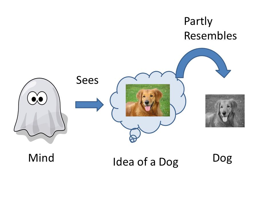 Mind Idea of a Dog Dog Partly Resembles Sees
