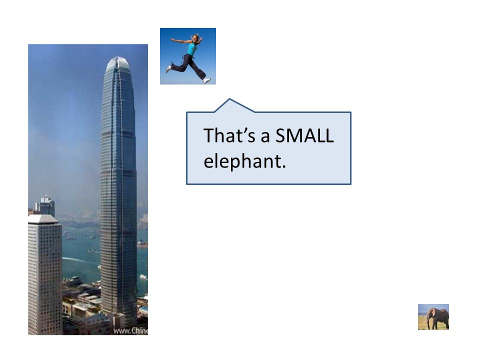 That's a SMALL elephant.