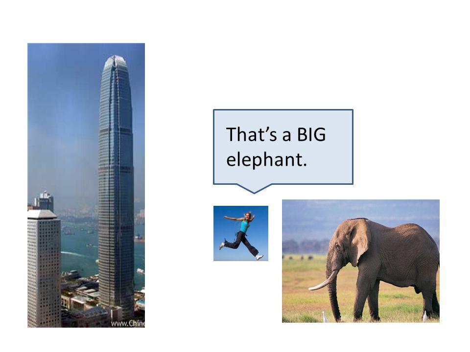 That's a BIG elephant.