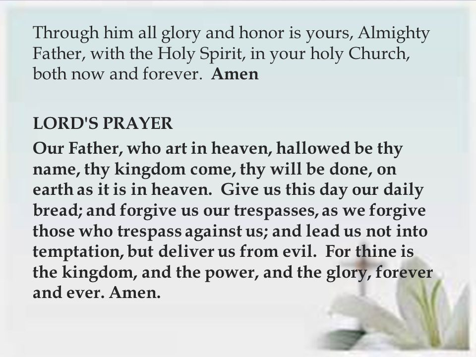  Through him all glory and honor is yours, Almighty Father, with the Holy Spirit, in your holy Church, both now and forever.
