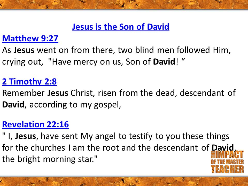 Jesus is the Son of David Matthew 9:27 Matthew 9:27 As Jesus went on from there, two blind men followed Him, crying out, Have mercy on us, Son of David.