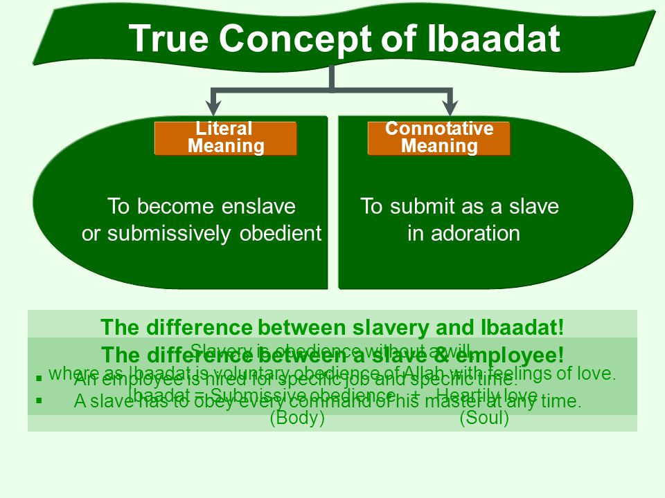 True Concept of Ibaadat The difference between a slave & employee!  An employee is hired for specific job and specific time.  A slave has to obey ev