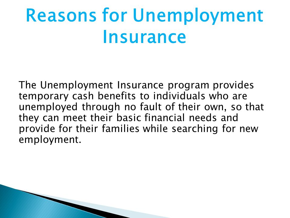 The Unemployment Insurance program provides temporary cash benefits to individuals who are unemployed through no fault of their own, so that they can meet their basic financial needs and provide for their families while searching for new employment.