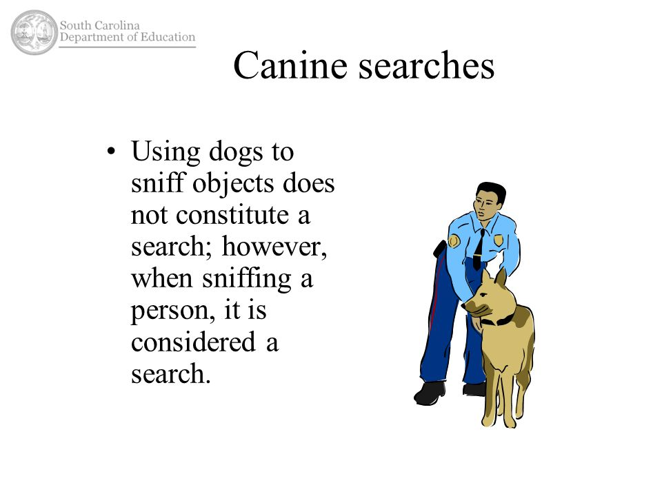 Canine searches Using dogs to sniff objects does not constitute a search; however, when sniffing a person, it is considered a search.
