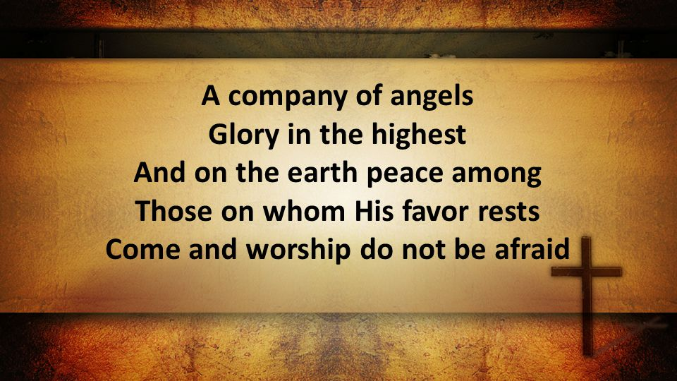 A company of angels Glory in the highest And on the earth peace among Those on whom His favor rests Come and worship do not be afraid
