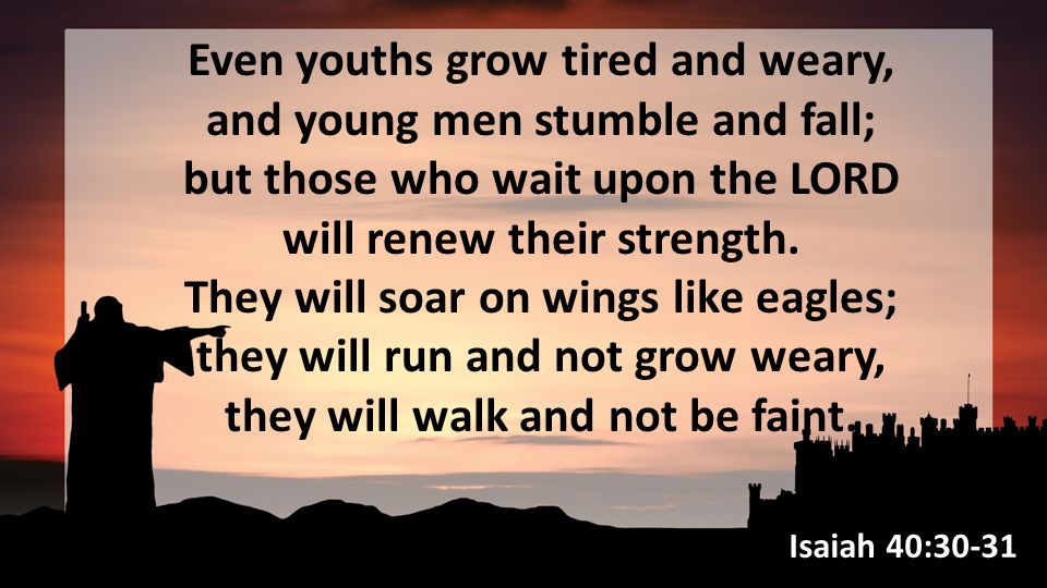 Even youths grow tired and weary, and young men stumble and fall; but those who wait upon the LORD will renew their strength.