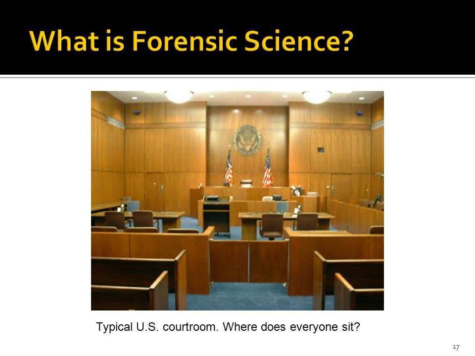 17 Typical U.S. courtroom. Where does everyone sit