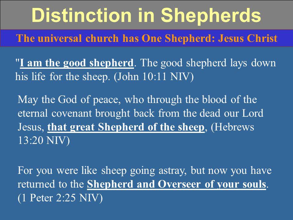 Distinction in Shepherds The universal church has One Shepherd: Jesus Christ I am the good shepherd.