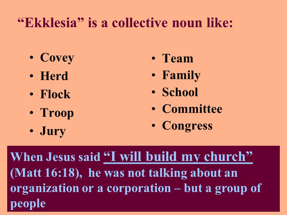 Ekklesia is a collective noun like: Covey Herd Flock Troop Jury Team Family School Committee Congress When Jesus said I will build my church (Matt 16:18), he was not talking about an organization or a corporation – but a group of people