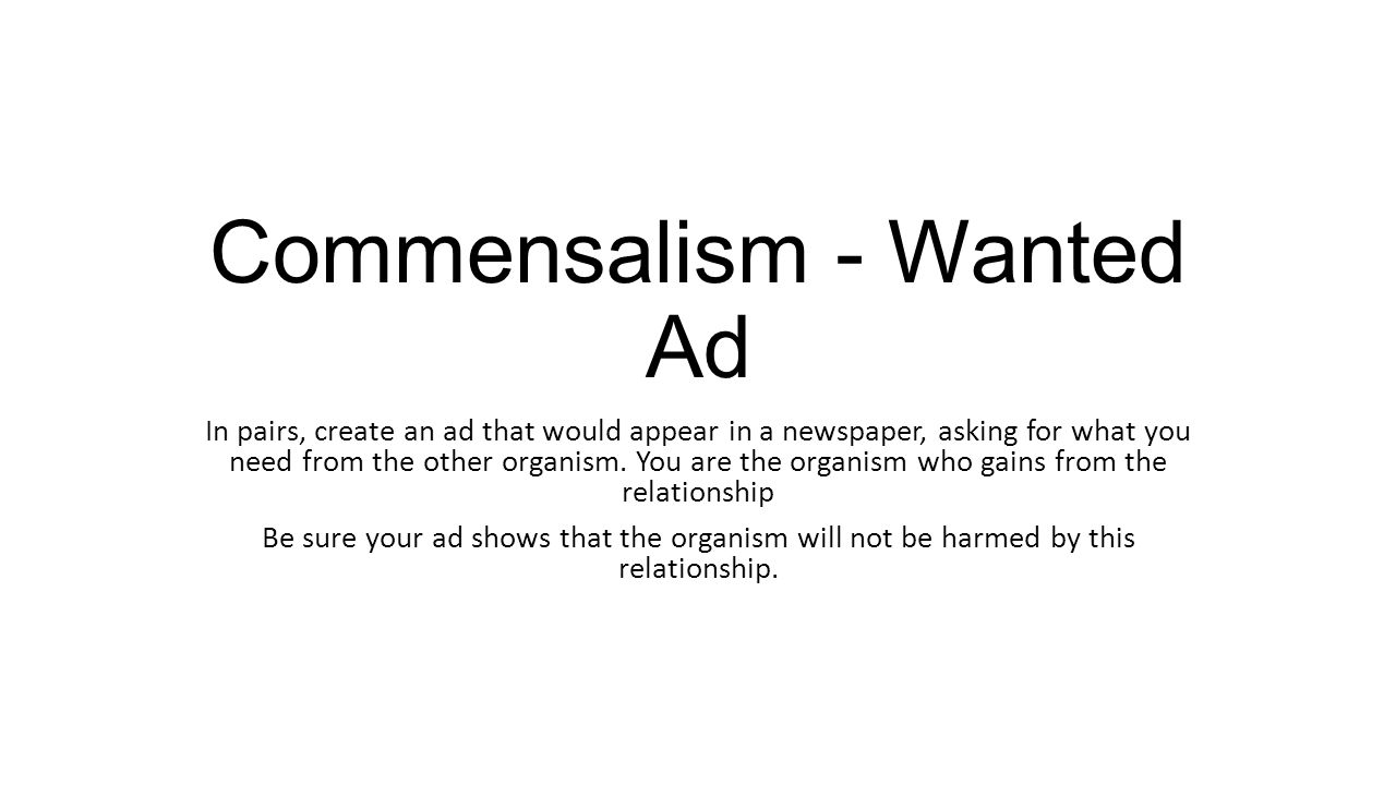 Commensalism - Wanted Ad In pairs, create an ad that would appear in a newspaper, asking for what you need from the other organism.