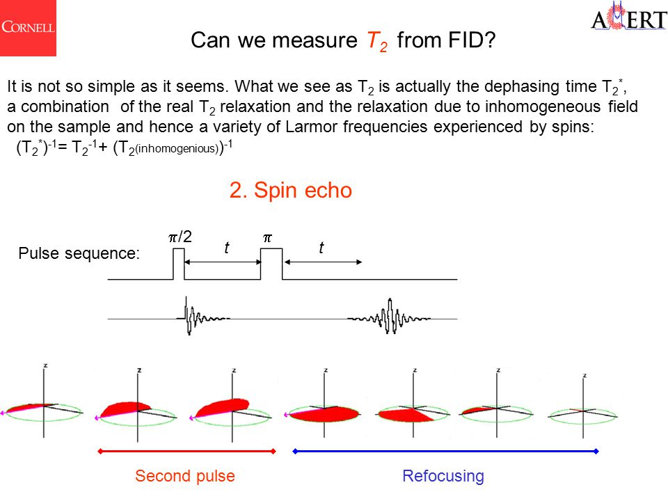 2. Spin echo Pulse sequence:  /2  tt Second pulseRefocusing It is not so simple as it seems.