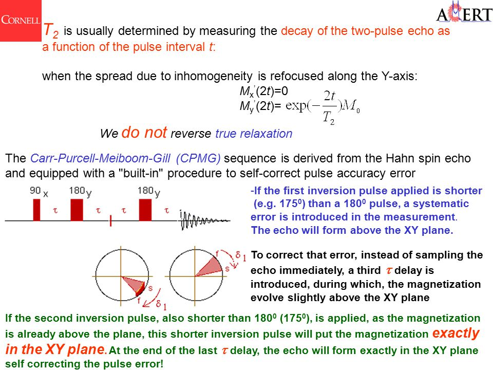 T 2 is usually determined by measuring the decay of the two-pulse echo as a function of the pulse interval t: when the spread due to inhomogeneity is