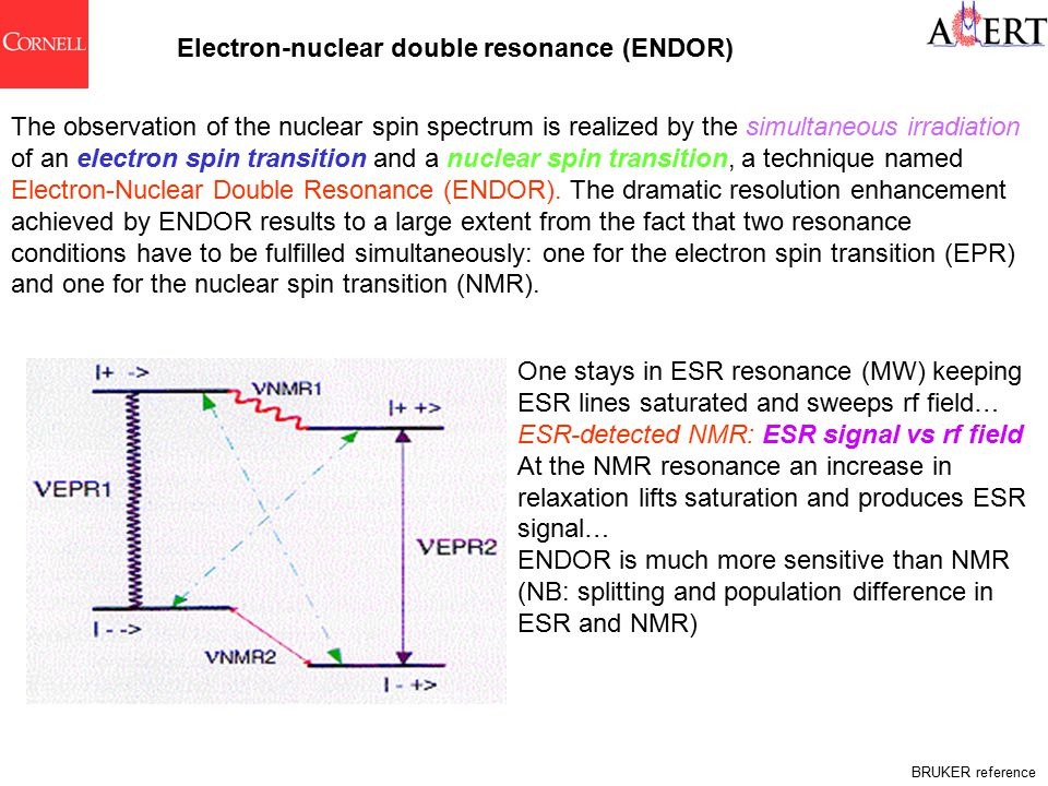 Electron-nuclear double resonance (ENDOR) The observation of the nuclear spin spectrum is realized by the simultaneous irradiation of an electron spin transition and a nuclear spin transition, a technique named Electron-Nuclear Double Resonance (ENDOR).