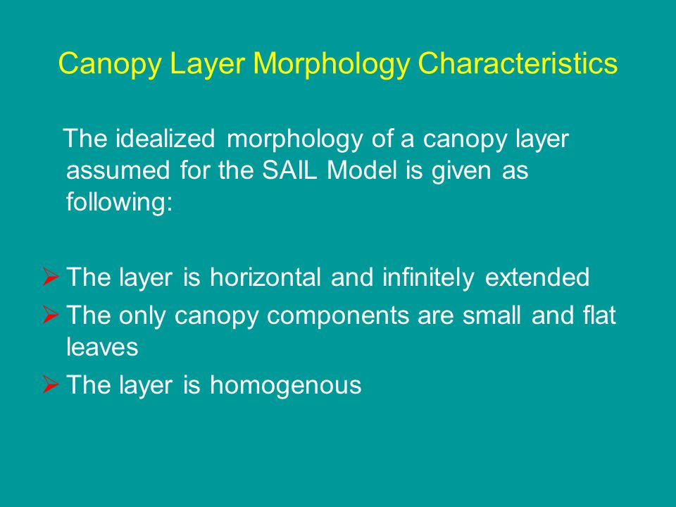 Canopy Layer Morphology Characteristics The idealized morphology of a canopy layer assumed for the SAIL Model is given as following:  The layer is ho