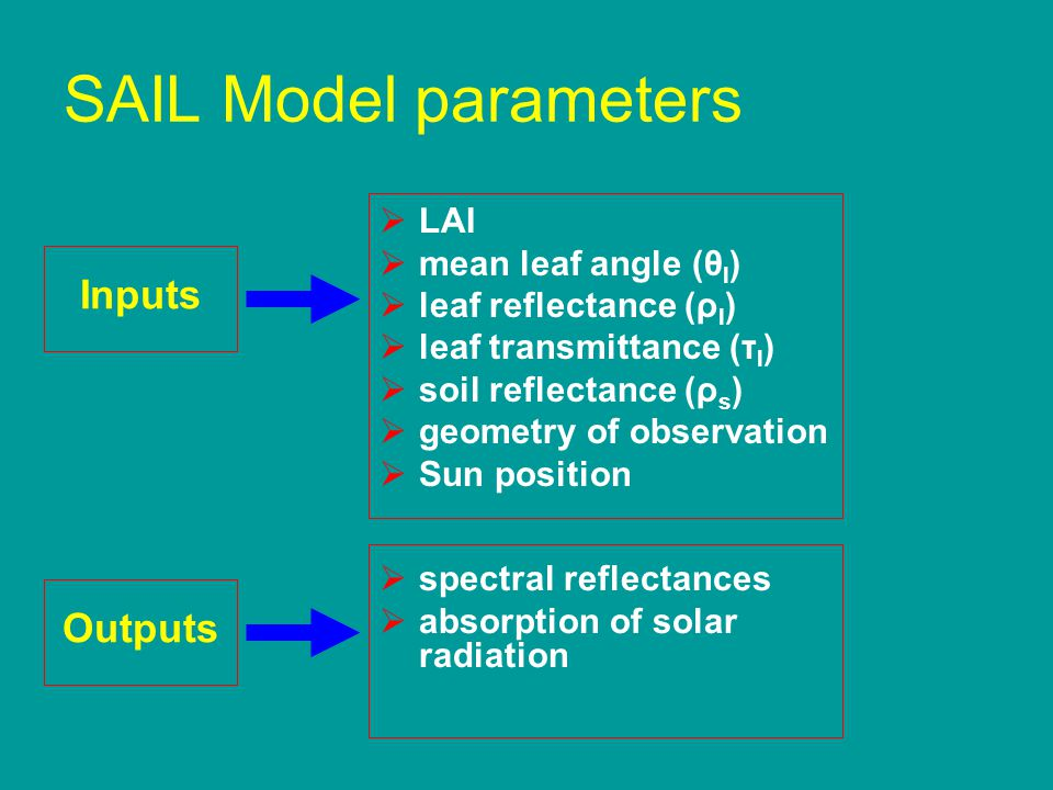SAIL Model parameters  LAI  mean leaf angle (θ l )  leaf reflectance (ρ l )  leaf transmittance (τ l )  soil reflectance (ρ s )  geometry of obs