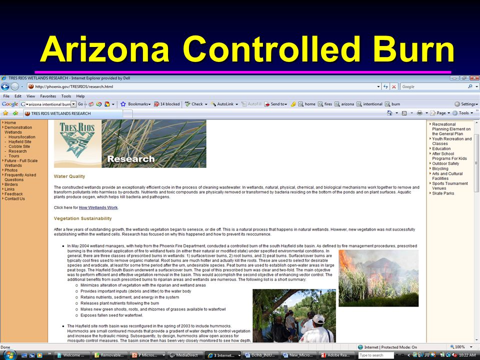 Arizona Controlled Burn