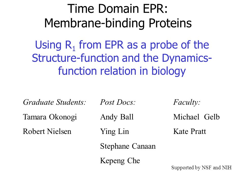 Time Domain EPR: Membrane-binding Proteins Using R 1 from EPR as a probe of the Structure-function and the Dynamics- function relation in biology Graduate Students: Tamara Okonogi Robert Nielsen Faculty: Michael Gelb Kate Pratt Post Docs: Andy Ball Ying Lin Stephane Canaan Kepeng Che Supported by NSF and NIH