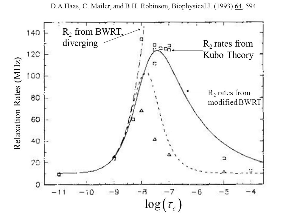 R 2 from BWRT, diverging R 2 rates from Kubo Theory R 2 rates from modified BWRT Relaxation Rates (MHz) D.A.Haas, C.