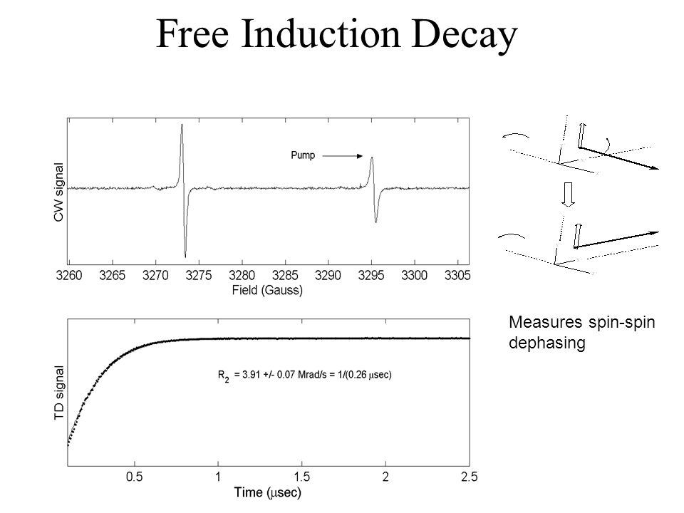 Free Induction Decay Measures spin-spin dephasing