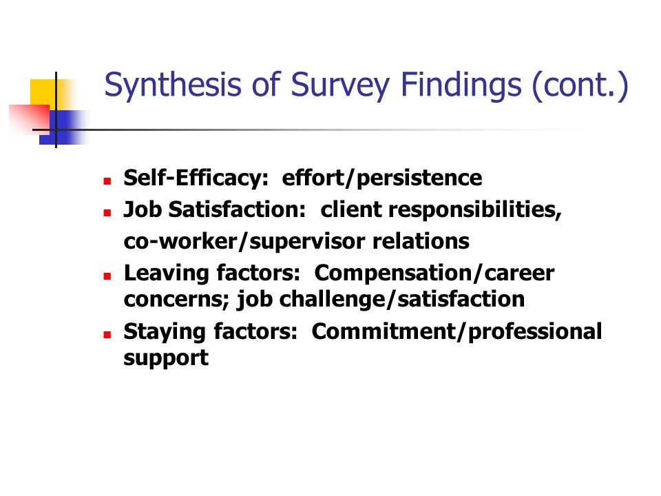 Synthesis of Survey Findings (cont.) Self-Efficacy: effort/persistence Job Satisfaction: client responsibilities, co-worker/supervisor relations Leaving factors: Compensation/career concerns; job challenge/satisfaction Staying factors: Commitment/professional support