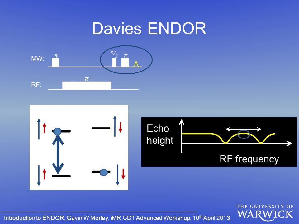 Introduction to ENDOR, Gavin W Morley, iMR CDT Advanced Workshop, 10 th April 2013 Davies ENDOR Echo height RF frequency
