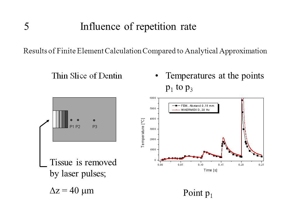 5Influence of repetition rate Results of Finite Element Calculation Compared to Analytical Approximation Temperatures at the points p 1 to p 3 Tissue