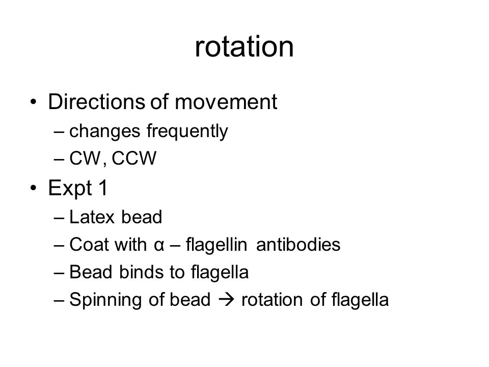 rotation Directions of movement –changes frequently –CW, CCW Expt 1 –Latex bead –Coat with α – flagellin antibodies –Bead binds to flagella –Spinning of bead  rotation of flagella