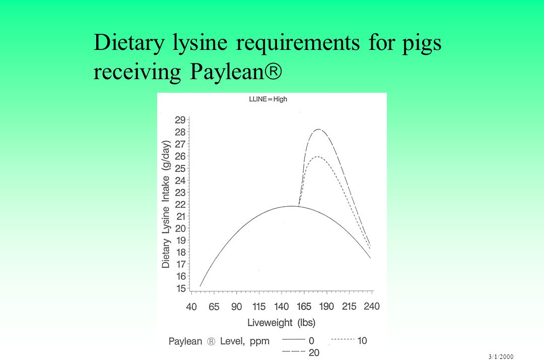3/1/2000 Dietary lysine requirements for pigs receiving Paylean 