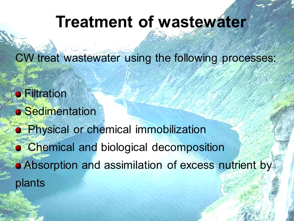 Treatment of wastewater CW treat wastewater using the following processes: Filtration Sedimentation Physical or chemical immobilization Chemical and b