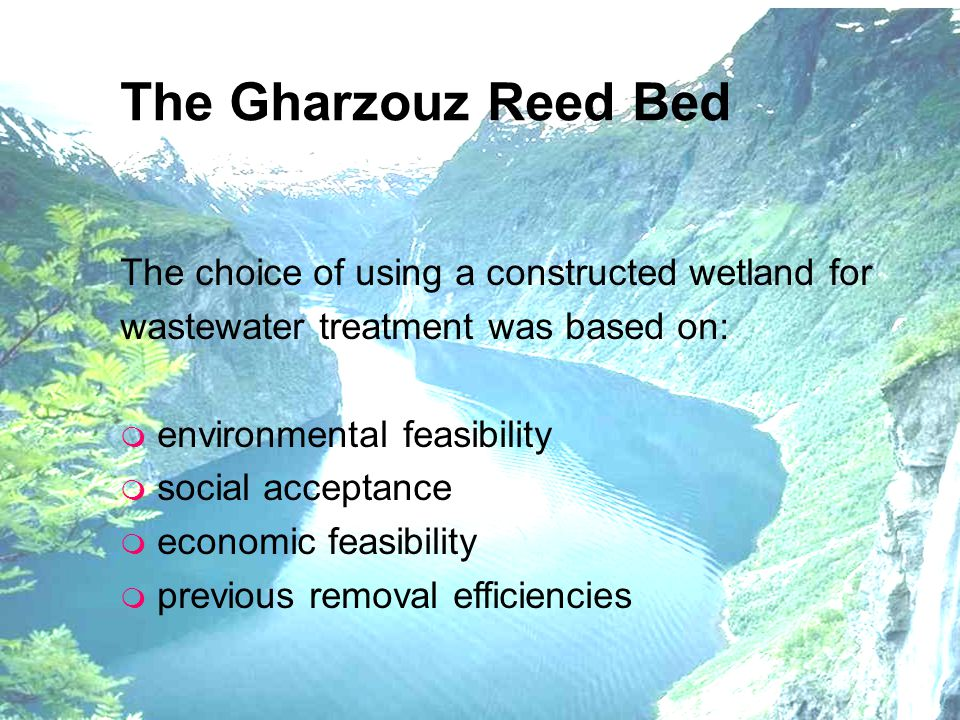 The Gharzouz Reed Bed The choice of using a constructed wetland for wastewater treatment was based on: m environmental feasibility m social acceptance