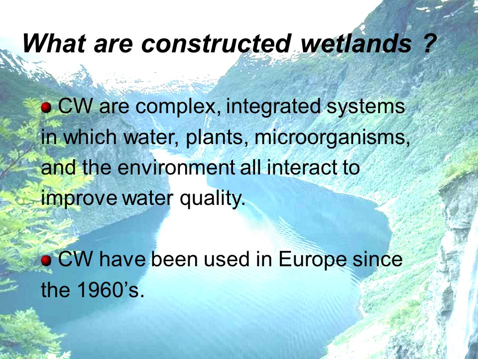 What are constructed wetlands ? CW are complex, integrated systems in which water, plants, microorganisms, and the environment all interact to improve