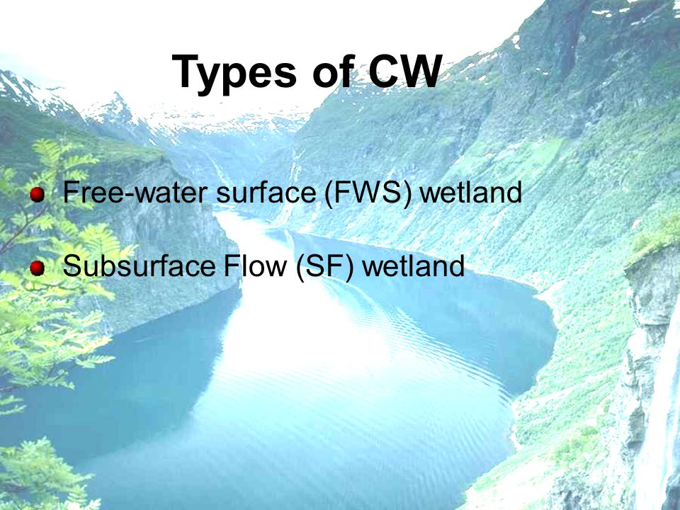 Types of CW Subsurface Flow (SF) wetland Free-water surface (FWS) wetland