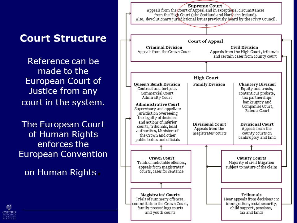Court Structure Reference can be made to the European Court of Justice from any court in the system.