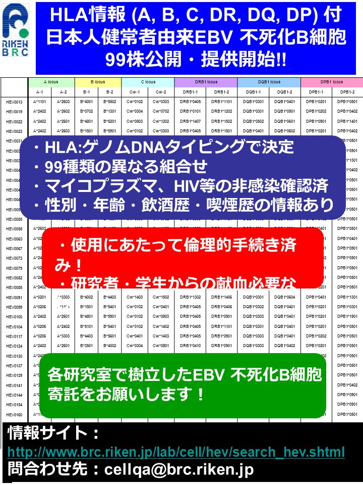 HLA 情報 (A, B, C, DR, DQ, DP) 付 日本人健常者由来 EBV 不死化 B 細胞 99 株公開・提供開始 !.