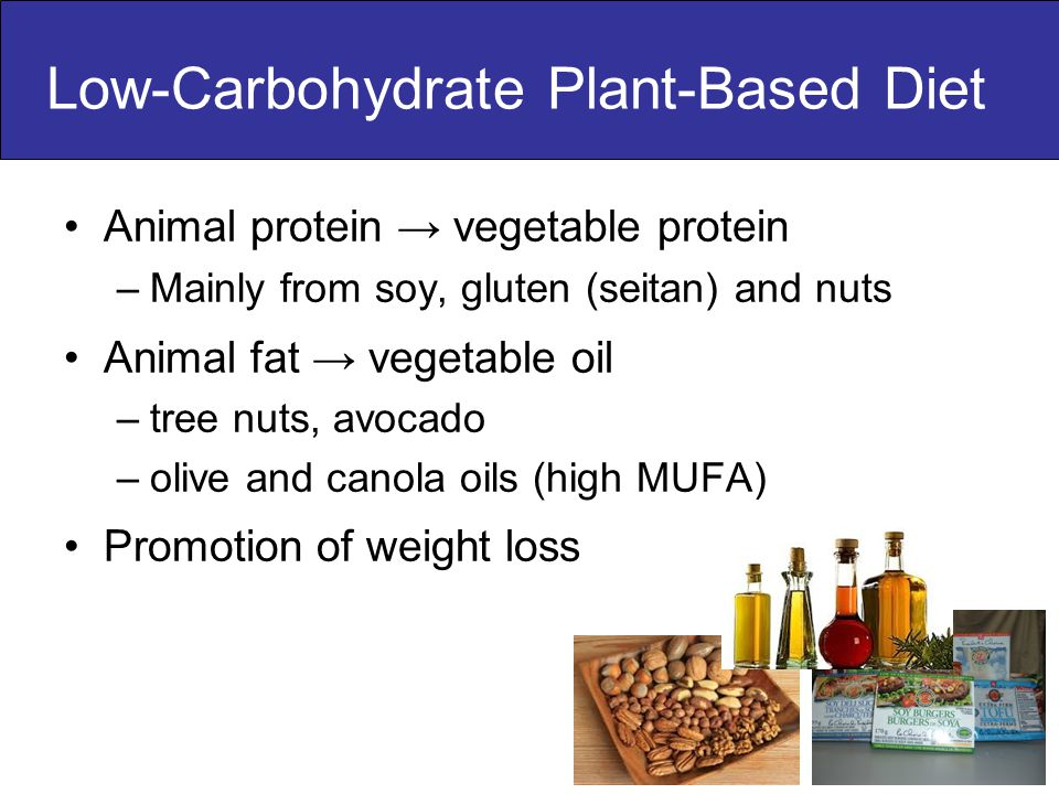 Animal protein → vegetable protein –Mainly from soy, gluten (seitan) and nuts Animal fat → vegetable oil –tree nuts, avocado –olive and canola oils (high MUFA) Promotion of weight loss Low-Carbohydrate Plant-Based Diet