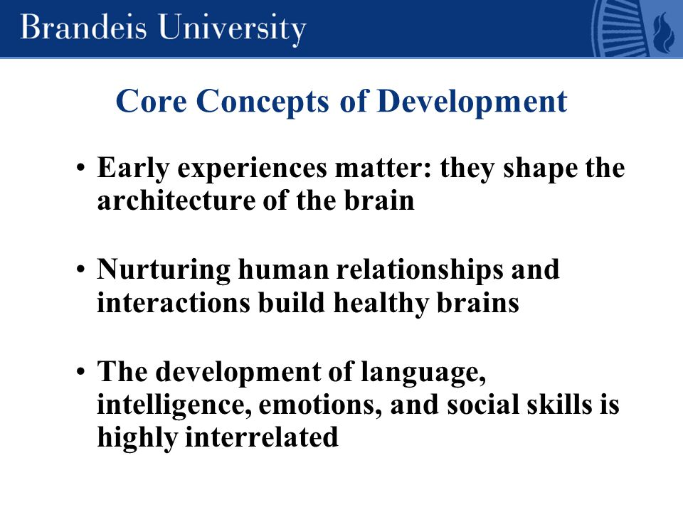 Early experiences matter: they shape the architecture of the brain Nurturing human relationships and interactions build healthy brains The development of language, intelligence, emotions, and social skills is highly interrelated Core Concepts of Development