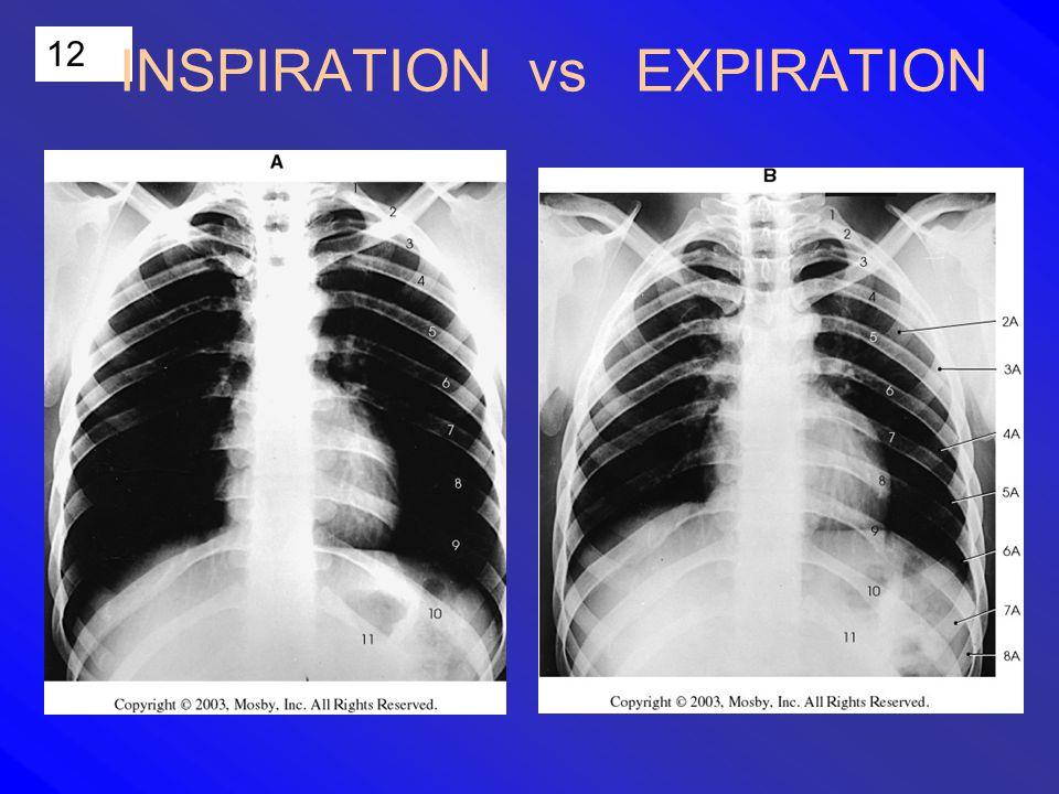 12 INSPIRATION vs EXPIRATION