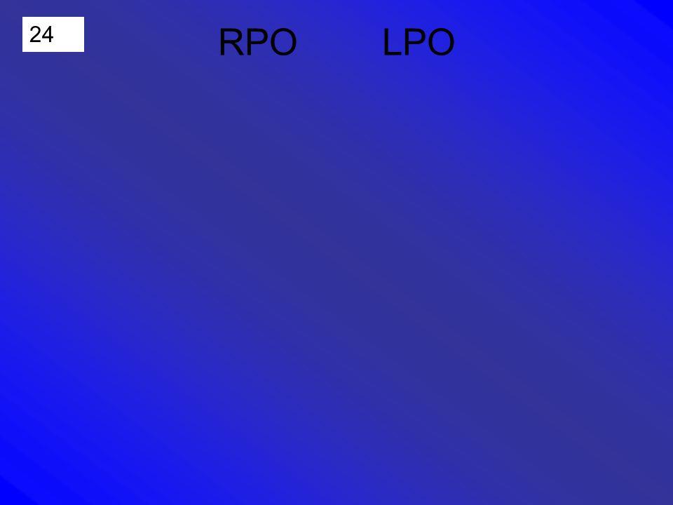 24 RPO LPO
