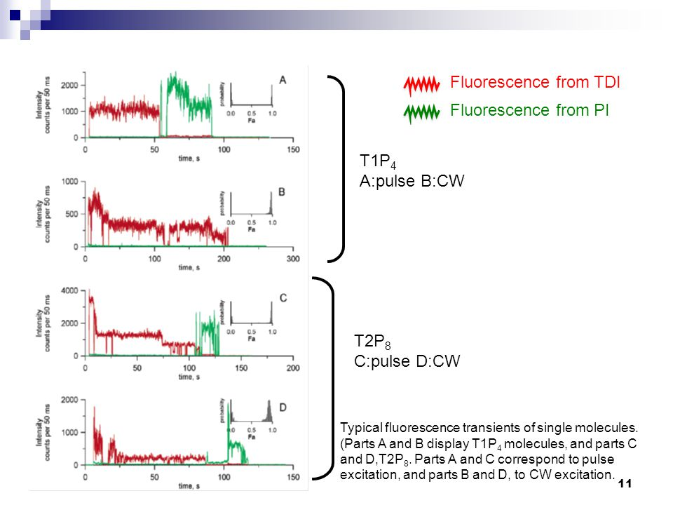 Typical fluorescence transients of single molecules. (Parts A and B display T1P 4 molecules, and parts C and D,T2P 8. Parts A and C correspond to puls