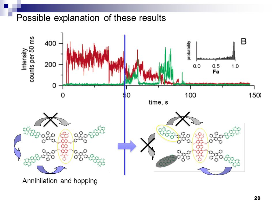 Possible explanation of these results Annihilation and hopping 20