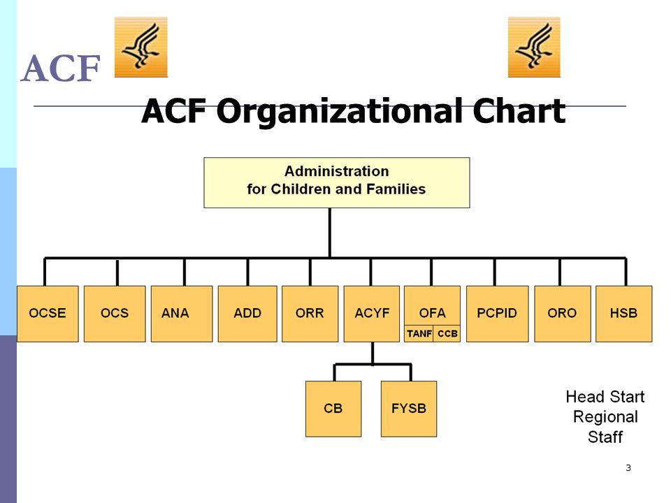 3 ACF ACF Organizational Chart