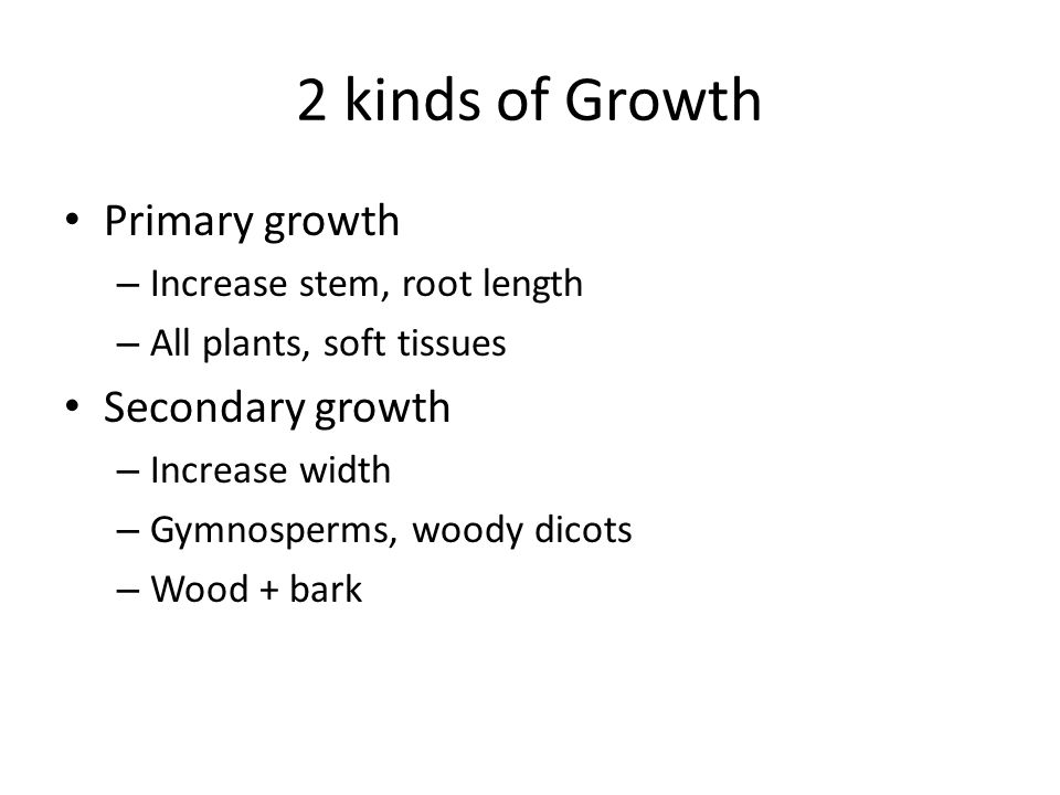 2 kinds of Growth Primary growth – Increase stem, root length – All plants, soft tissues Secondary growth – Increase width – Gymnosperms, woody dicots – Wood + bark