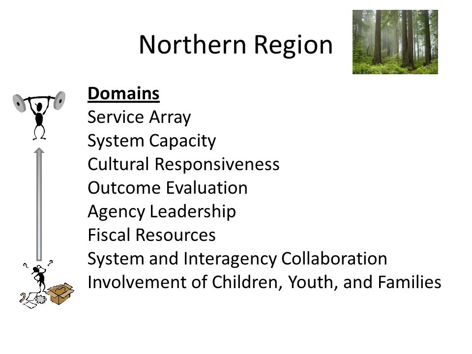 Northern Region Domains Service Array System Capacity Cultural Responsiveness Outcome Evaluation Agency Leadership Fiscal Resources System and Interagency Collaboration Involvement of Children, Youth, and Families
